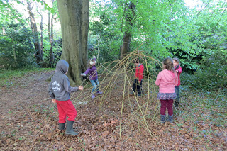 Making willow huts