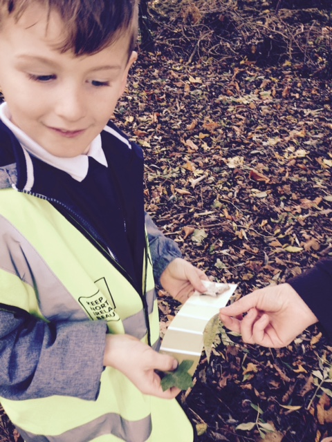 Happy at Forest School