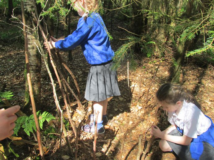 Making shelters for animals