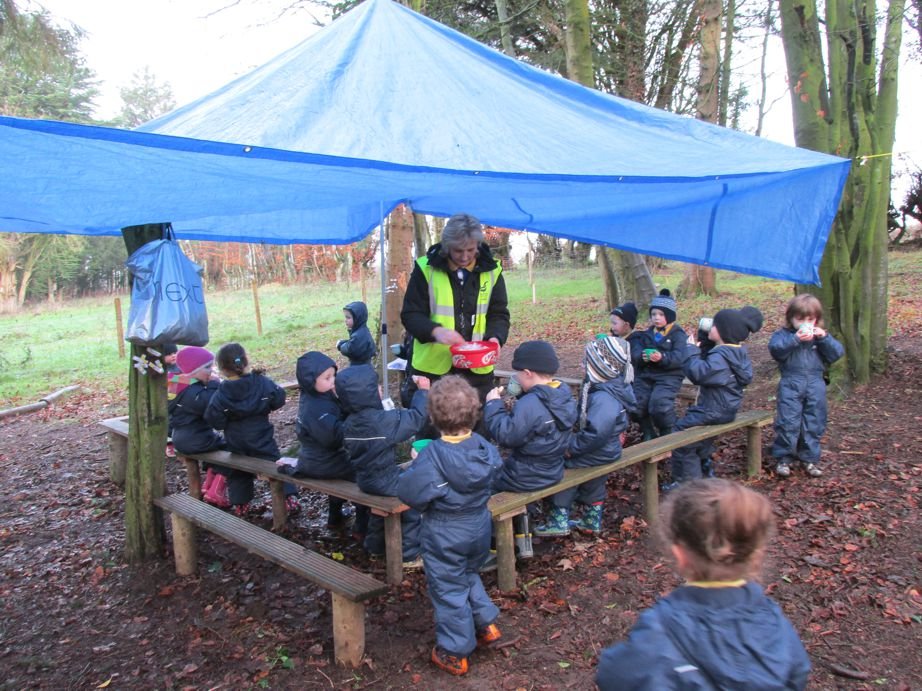 This is our Forest School site