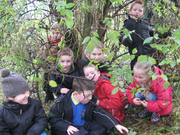 Earlview Primary School on their Forest School session