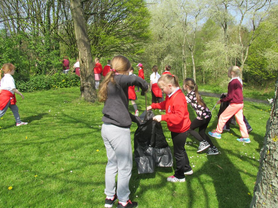 Keeping our Park tidy