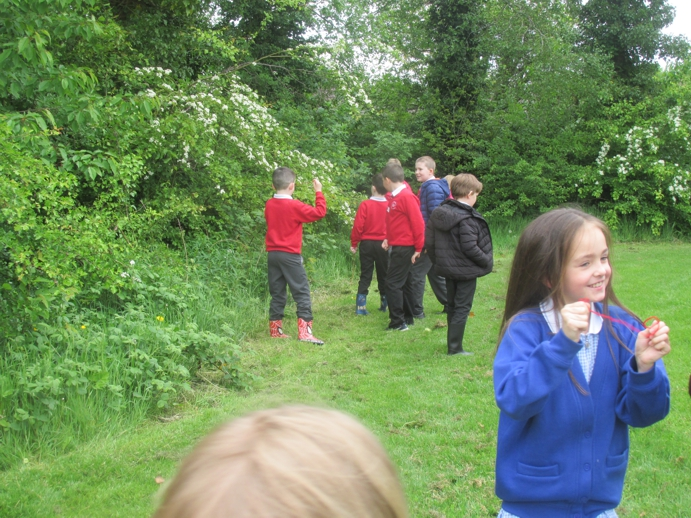 Our Forest School