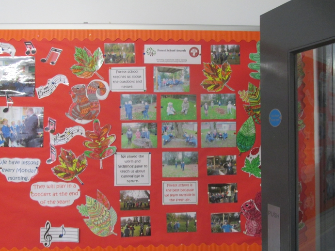 Forest School noticeboard