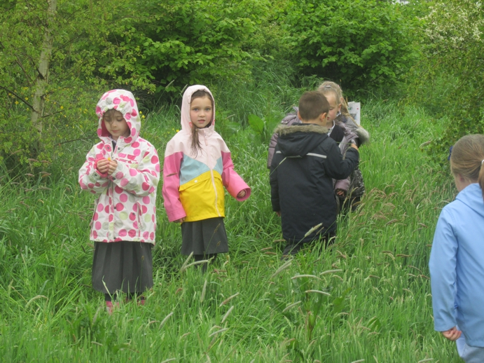 Looking for worms in all weathers