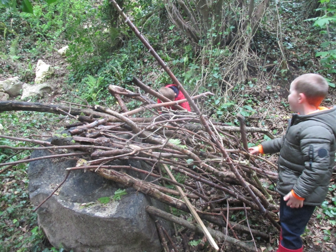 Building animal dens