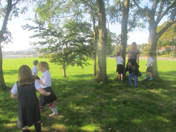 The lovely Lough Shore is one of our Forest School sites